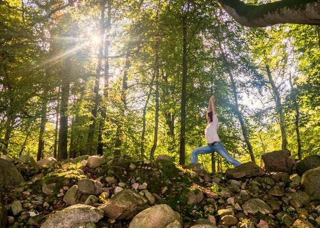 Bild: Carmen Hackradt im Wald
